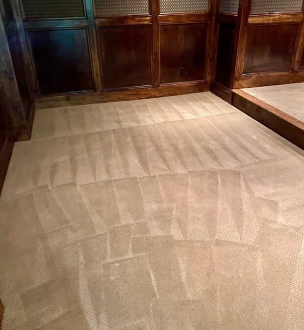 carpet cleaning, carpet cleaning near me, hoschton, ga, hot water extraction, bonnet cleaning, carpet cleaning services
