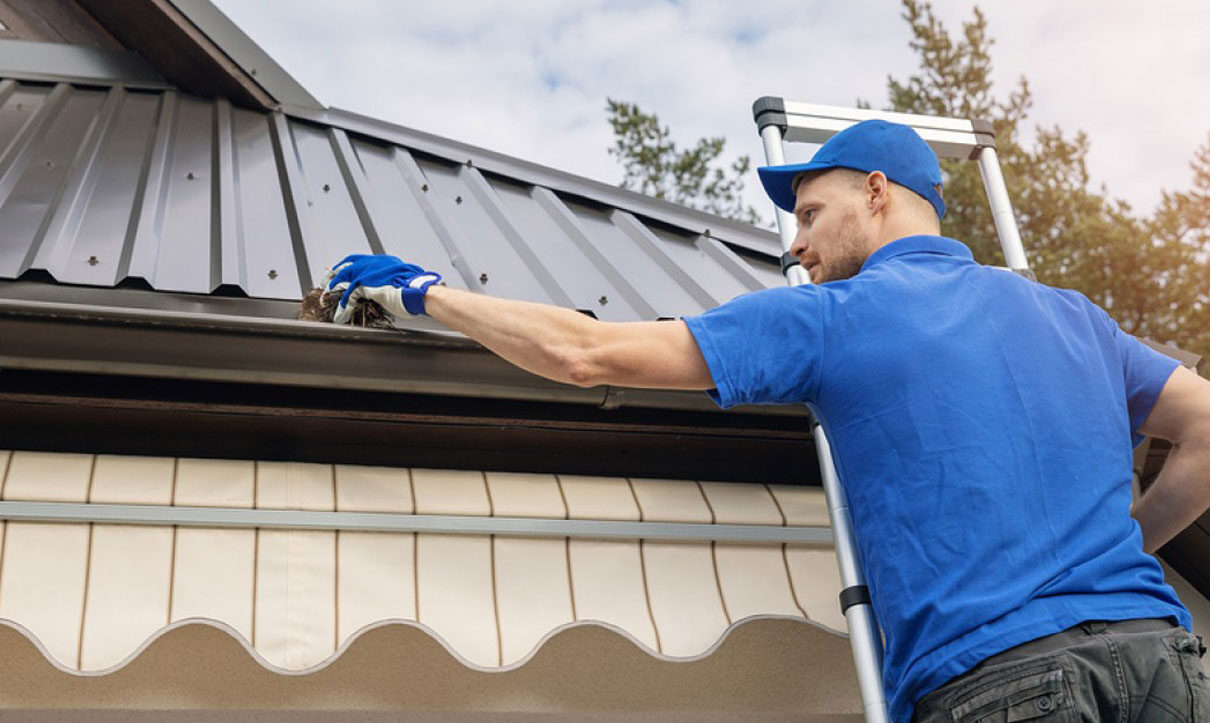pressure washing services, deck cleaning, house washing, roof cleaning
